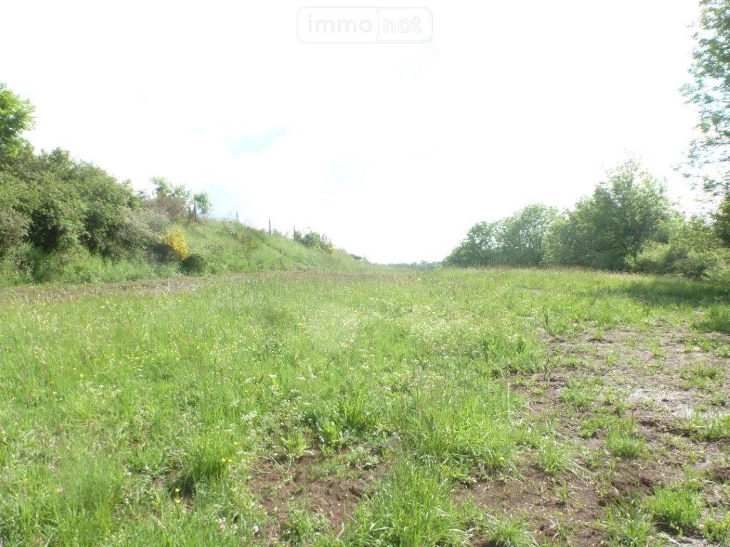 Terrain a batir a vendre Coren 15100 Cantal 7135 m2  63172 euros