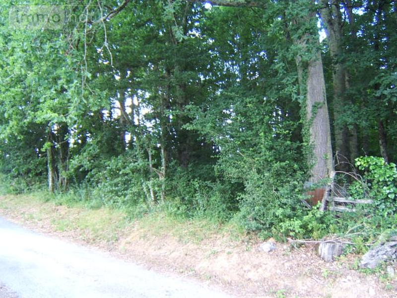 Terrain a batir a vendre Saint-Louis-en-l'Isle 24400 Dordogne 2561 m2  20000 euros