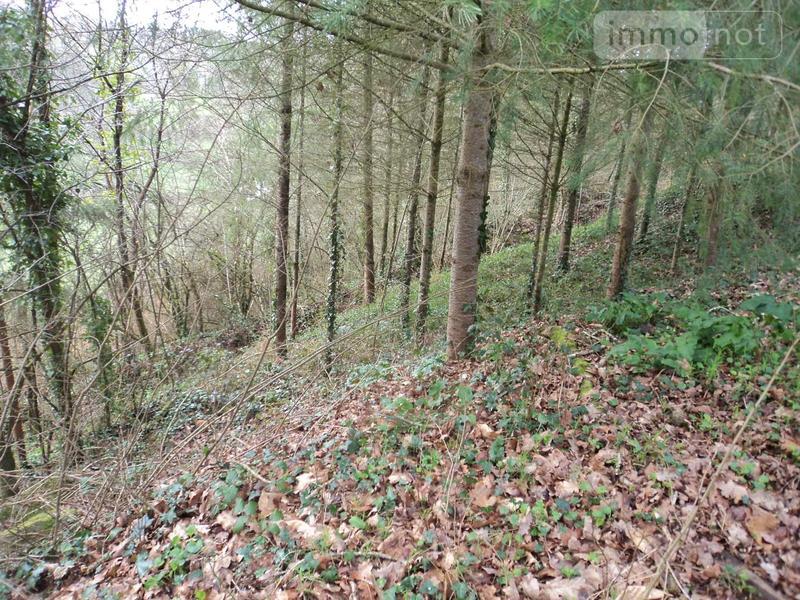 Terrains de loisirs bois etangs a vendre Le Tiercent 35460 Ille-et-Vilaine 4415 m2  8480 euros