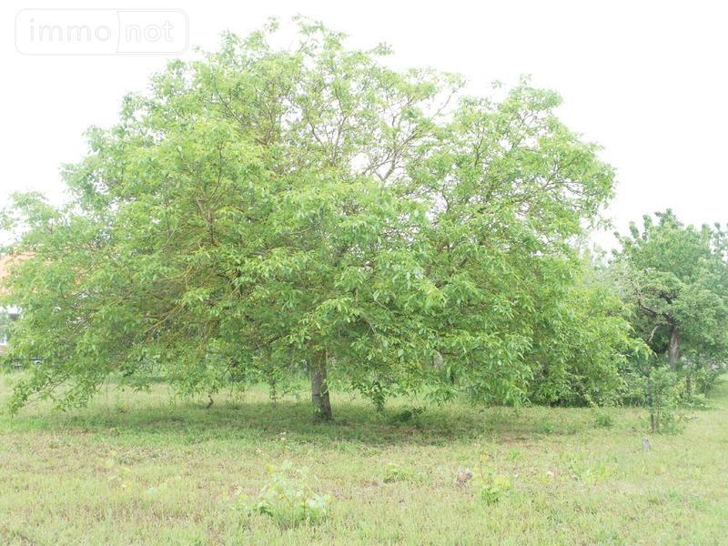 Terrain a batir a vendre Crouzilles 37220 Indre-et-Loire 680 m2  36160 euros