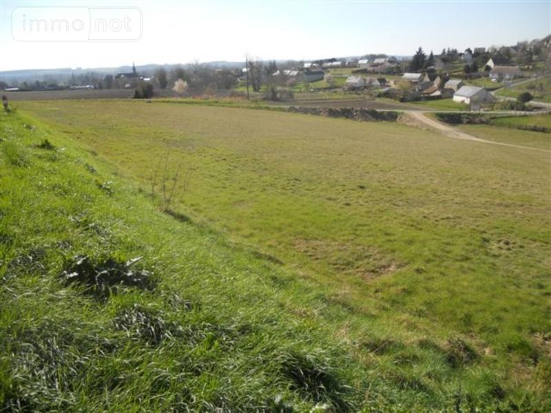 Terrain a batir a vendre Cravant-les-Côteaux 37500 Indre-et-Loire 1330 m2  15900 euros