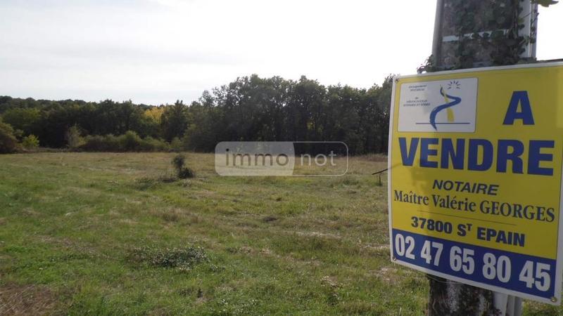 Terrain a batir a vendre Neuil 37190 Indre-et-Loire 1251 m2  24000 euros