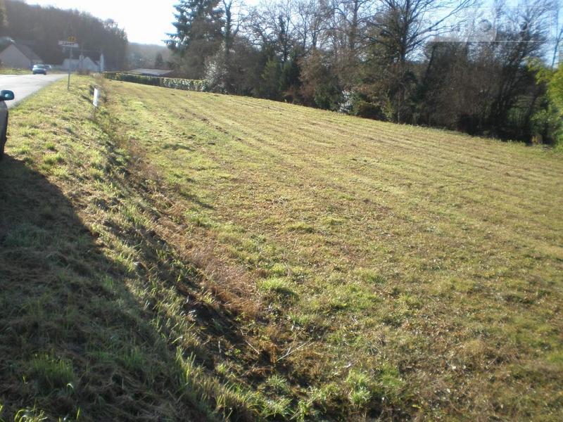 Terrain a batir a vendre Seigy 41110 Loir-et-Cher 1520 m2  26500 euros