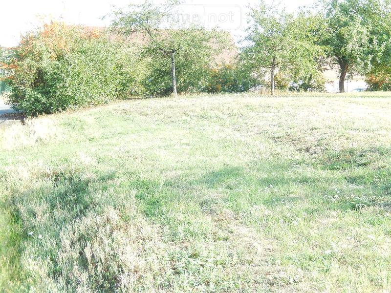 Terrain a batir a vendre Saint-Aignan 41110 Loir-et-Cher 787 m2  28800 euros