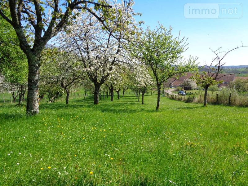 Terrain a batir a vendre Verseilles-le-Bas 52250 Haute-Marne 1972 m2  43000 euros