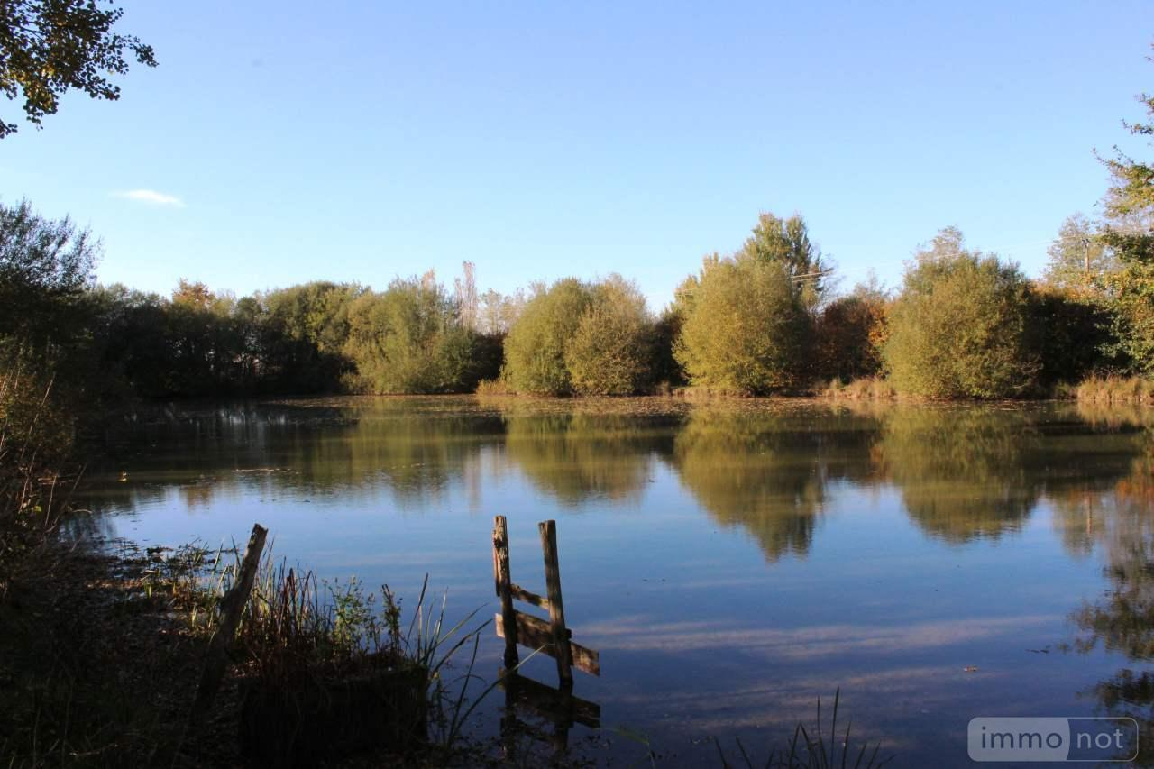 Terrains de loisirs bois etangs a vendre Pouancé 49420 Maine-et-Loire 10000 m2  37100 euros