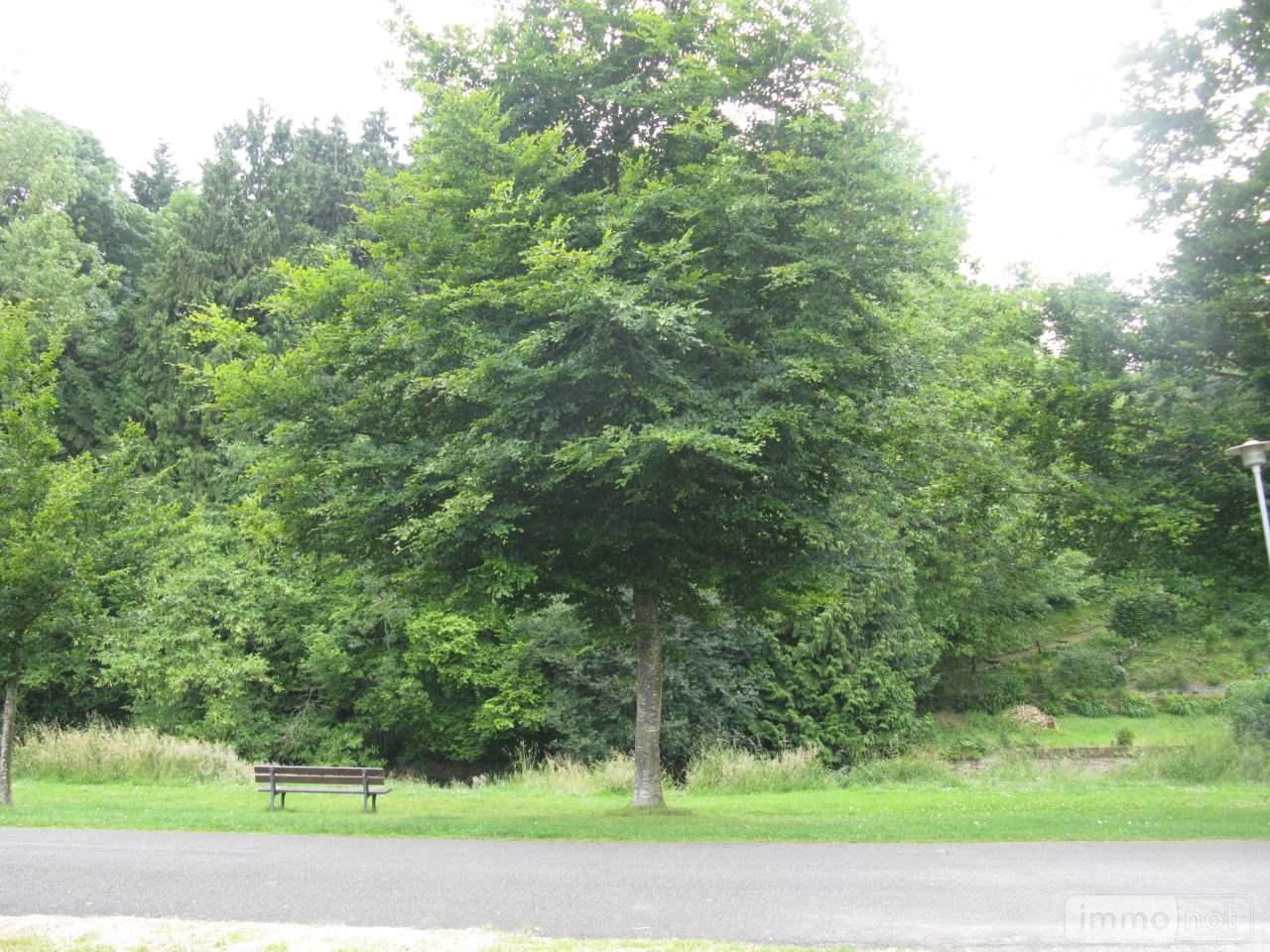 Terrain a batir a vendre Ambrières-les-Vallées 53300 Mayenne 1970 m2  58022 euros