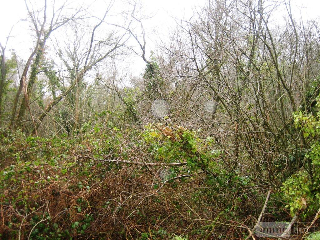 Terrains de loisirs bois etangs a vendre Le Croisty 56540 Morbihan 8570 m2  27407 euros