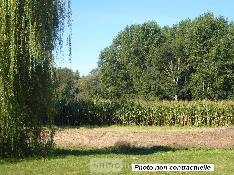 Terrain a batir a vendre Honnecourt-sur-Escaut 59266 Nord 6156 m2  42392 euros