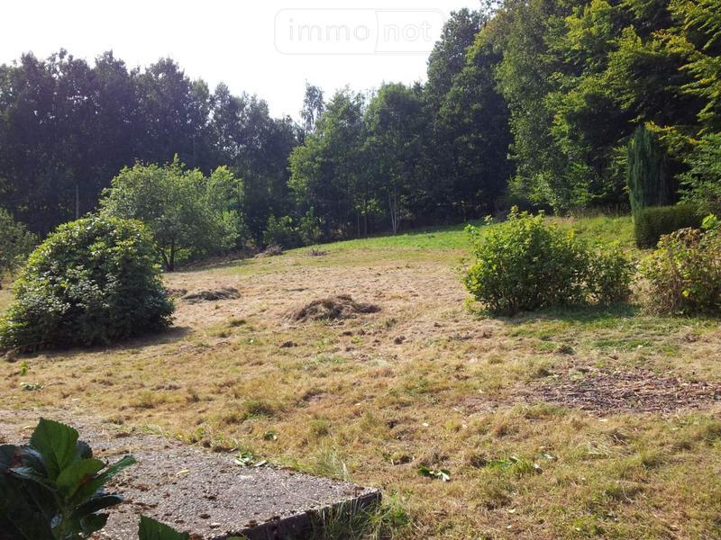 Terrain a batir a vendre Saint-Nabord 88200 Vosges 1307 m2  30000 euros