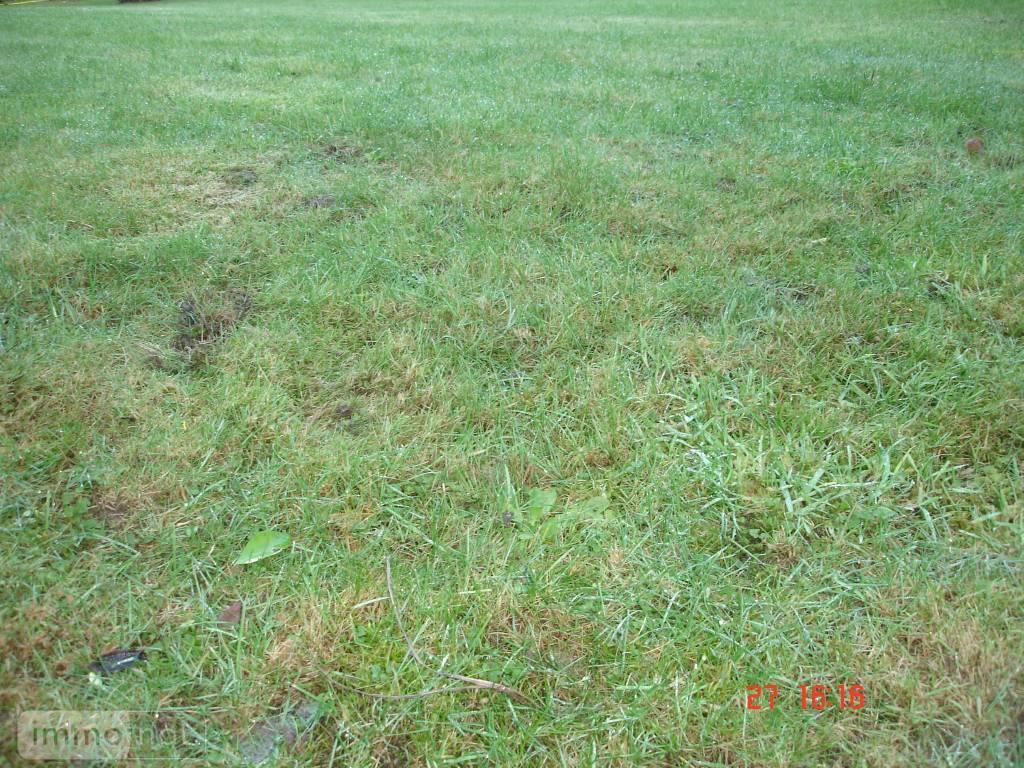 Terrain a batir a vendre Priziac 56320 Morbihan 441 m2  15900 euros