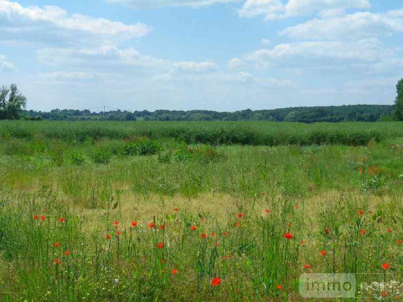 Terrain a batir a vendre Vignoux-sur-Barangeon 18500 Cher 1563 m2  39763 euros