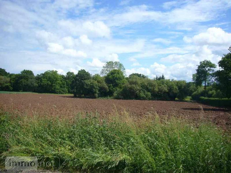 Terrain a batir a vendre Radenac 56500 Morbihan 3205 m2  40322 euros