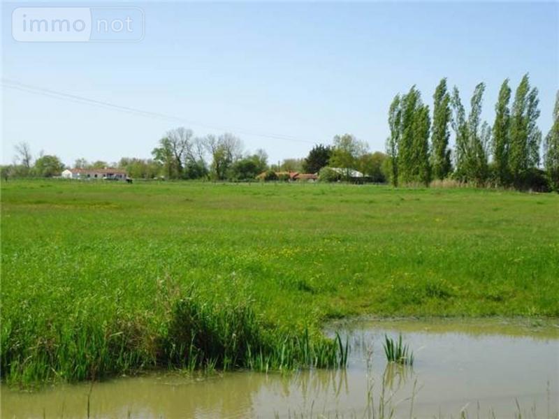 Terrain a batir a vendre Le Perrier 85300 Vendee 610 m2  55850 euros