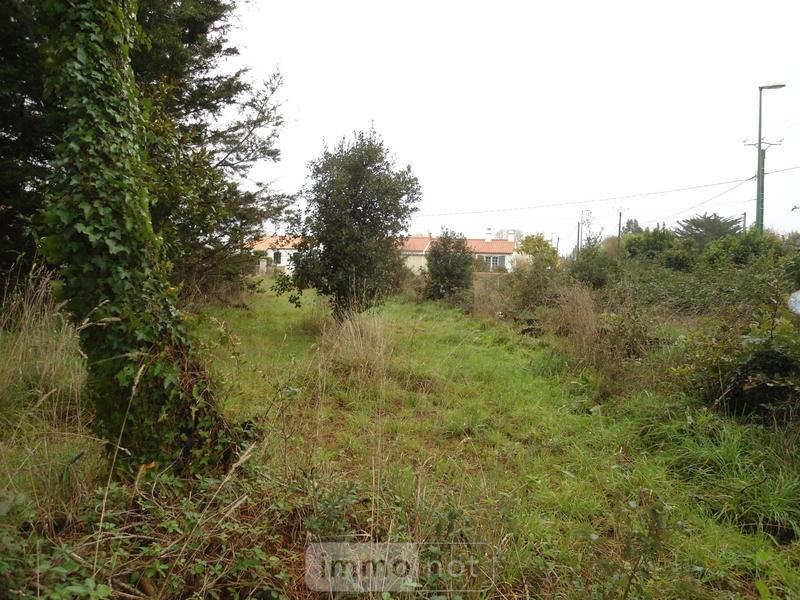 Terrain a batir a vendre Saint-Urbain 85230 Vendee 837 m2  40000 euros