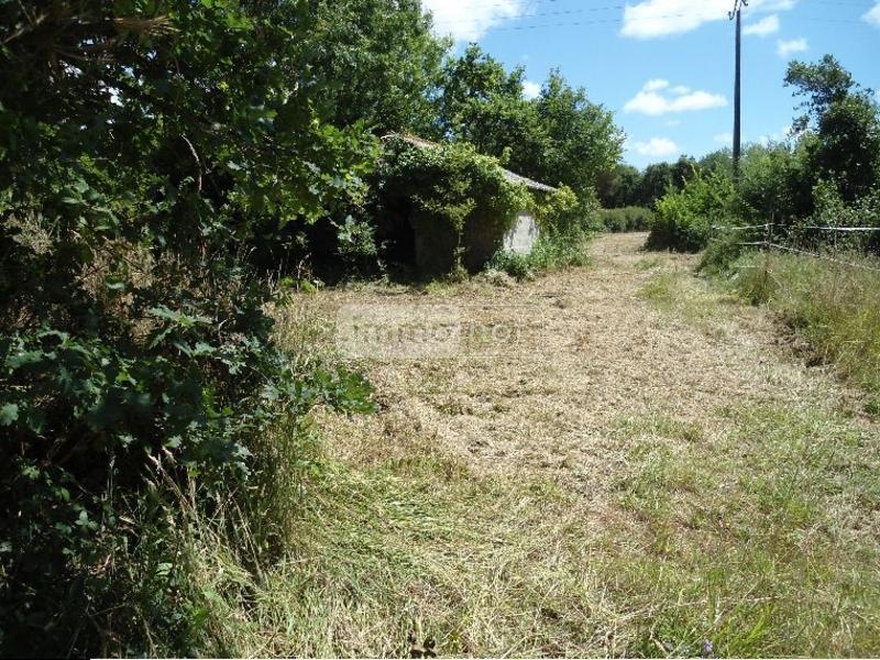 Terrain a batir a vendre Saint-Urbain 85230 Vendee 6219 m2  310375 euros