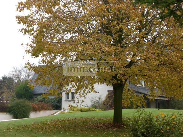 Maison a vendre Pithon 02480 Aisne 9 pièces 490622 euros