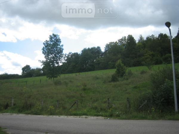 Terrain a batir a vendre Salmagne 55000 Meuse 1315 m2  22000 euros