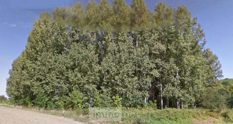 Terrains de loisirs bois etangs a vendre Pleudihen-sur-Rance 22690 Cotes-d'Armor 10680 m2  15900 euros