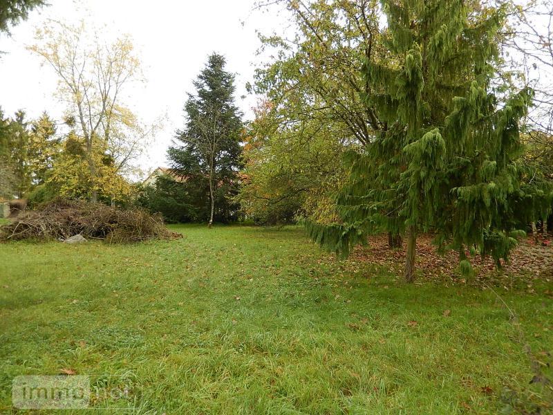 Terrain a batir a vendre Cormeray 41120 Loir-et-Cher 1340 m2  73472 euros