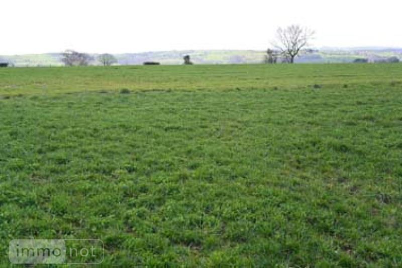 Terrain a batir a vendre Baraqueville 12160 Aveyron 50000 m2  557572 euros