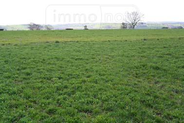 Terrain a batir a vendre Baraqueville 12160 Aveyron 20000 m2  252000 euros
