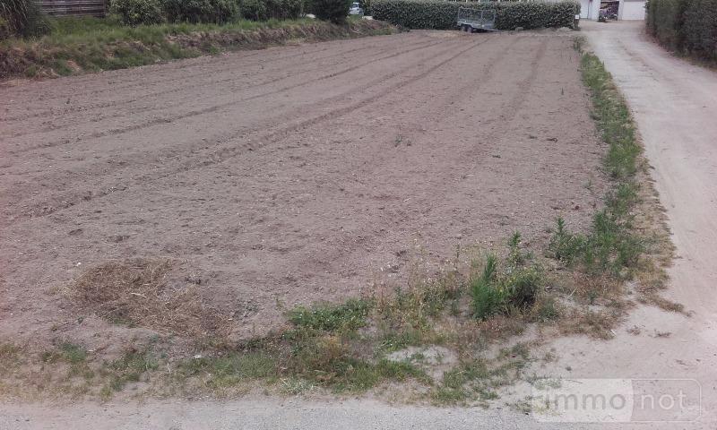 Terrain a batir a vendre Plouescat 29430 Finistere 841 m2  69177 euros