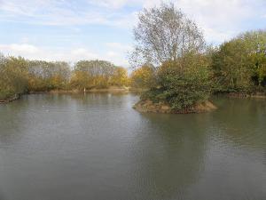 Terrains de loisirs bois etangs a vendre Prisches 59550 Nord 13400 m2  75000 euros