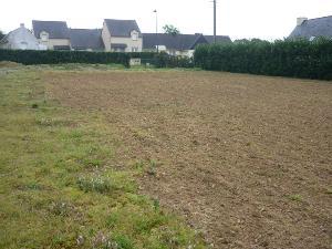 Terrain a batir a vendre Saint-Nic 29550 Finistere  63172 euros