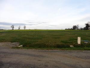Terrain a batir a vendre Antrain 35560 Ille-et-Vilaine 1727 m2  37100 euros