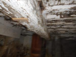 Maison a vendre Cuguen 35270 Ille-et-Vilaine  68835 euros