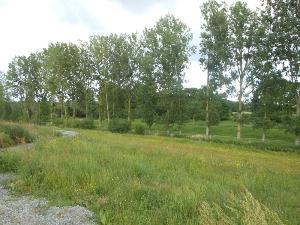 Terrain a batir a vendre Dol-de-Bretagne 35120 Ille-et-Vilaine 671 m2  60118 euros