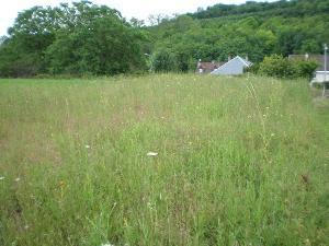 Terrain a batir a vendre Saint-Aignan 41110 Loir-et-Cher 1446 m2  19080 euros