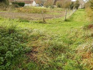 Terrain a batir a vendre Couffy 41110 Loir-et-Cher 3926 m2  53000 euros