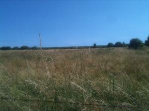 Terrain a batir a vendre Ville-en-Tardenois 51170 Marne 700 m2  81000 euros