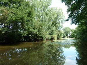 Terrains de loisirs bois etangs a vendre Louvigné 53210 Mayenne 745 m2  9540 euros