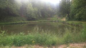 Terrains de loisirs bois etangs a vendre Saulges 53340 Mayenne 20200 m2  63172 euros