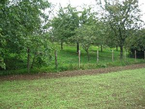 Terrain a batir a vendre Juvigné 53380 Mayenne 2209 m2  51132 euros