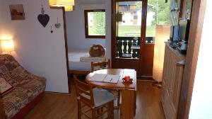 Appartement a vendre Abondance 74360 Haute-Savoie 23 m2 2 pièces 59000 euros