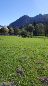 Terrain a batir a vendre La Chapelle-d'Abondance 74360 Haute-Savoie 930 m2  291760 euros