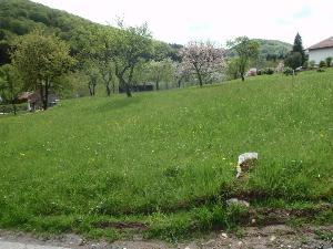 Terrain a batir a vendre Tendon 88460 Vosges 1278 m2  39500 euros