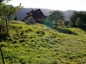 Terrain a batir a vendre Thannenkirch 68590 Haut-Rhin 1042 m2  135000 euros