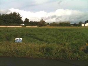 Terrain a batir a vendre Plouhinec 29780 Finistere 545 m2  31800 euros