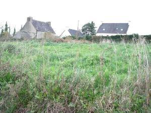 Terrain a batir a vendre Taulé 29670 Finistere 1000 m2  51842 euros