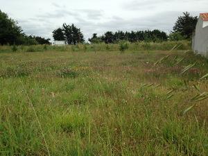 Terrain a batir a vendre Saint-Hilaire-de-Riez 85270 Vendee 503 m2  86856 euros