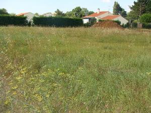 Terrain a batir a vendre Challans 85300 Vendee 1010 m2  104372 euros
