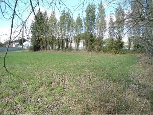 Terrain a batir a vendre Bois-de-Céné 85710 Vendee 1033 m2  65129 euros