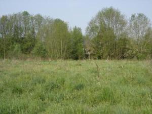 Terrain a batir a vendre Velaines 55500 Meuse 1700 m2  36000 euros