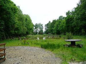 Terrains de loisirs bois etangs a vendre Saint-Pierre-de-Plesguen 35720 Ille-et-Vilaine  58022 euros