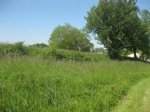 Terrain a batir a vendre Giffaumont-Champaubert 51290 Marne 6770 m2  208000 euros